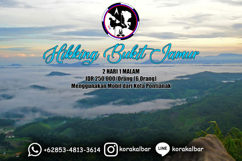 Paket Wisata Bukit Jamur